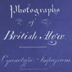 Anna Atkins - Title Page of Photographs of British Algae Cyanotype Impressions © Anna Atkins