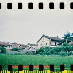 Fong Ching Wa - Random moments I saw on my way of journey - Lomography Color Negative 800 - Fujian, China