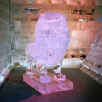 Lynn Gefen - Pink Lion - Portra 400 - The Ice Festival, Jerusalem