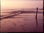 Name Alexandre Miguel Maia  Title Endless Tideland  Film used Fuji Velvia 100  Location Tideland, Westerhever : Germany