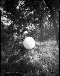 Name Laurent Bettinger  Title La lune dans les champs  Film used HP5 4x5 film  Location France