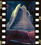 Name Marco  Title Angel of grief  Film used Kodak color infrared EIR 35mm  Location Rome