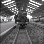 Name Mark Steadman  Title RH&D Railway  Film used Ilford FP4  Location Romney, Kent