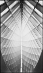 Name christoph morlinghaus  Title calatrava  Film used 12x20'' tmax400  Location milwaukee, wi
