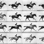 Eadweard Muybridge  Eadweard Muybridge