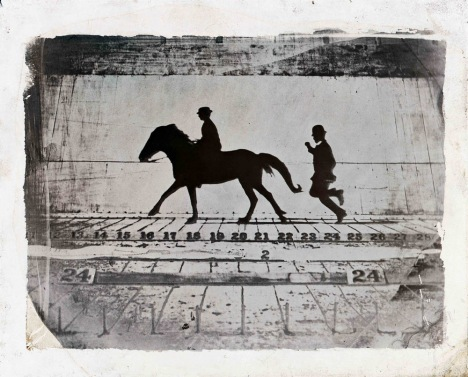 Eadweard Muybridge - Phases of a Stride by a Pony While Cantering 1879 © Wilson Centre for Photography