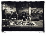 Dan Wood - Fish stall, Vietnam © Dan Wood