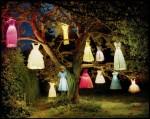 Tim Walker - The Dress Tree, Northumberland, England, 2002 - © Tim Walker