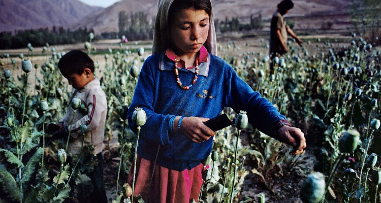 Children Work in Opium Field in Badakhshan, 1992 Copyright ©Steve McCurry/ Magnum Photos